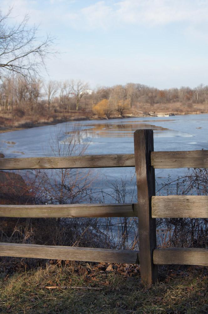 Lake Carina fence