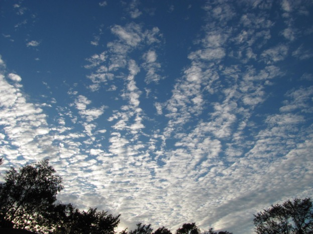 clouds 100904-IMG_5080