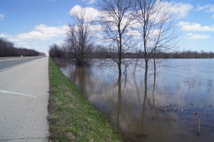 Looking north up 41. Looks like one more foot and water would be over here