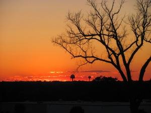 sunrise IMG_3189