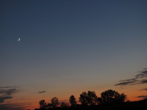 You can just barely see Mercury to the left and up from Venus.