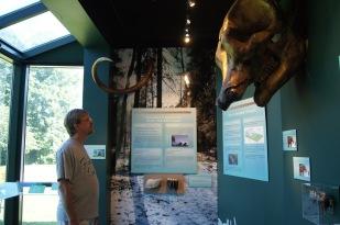 The hubby admiring a mastodon skull